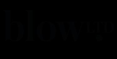Blow logo-2